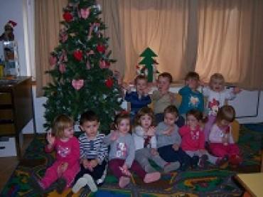 Ribice Vam žele sretan Božić i veselu i uspješnu 2015. godinu!