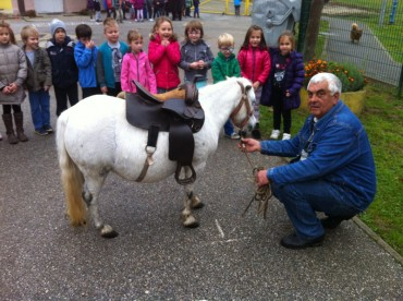 FOTO: Zvjezdice I i mini poni