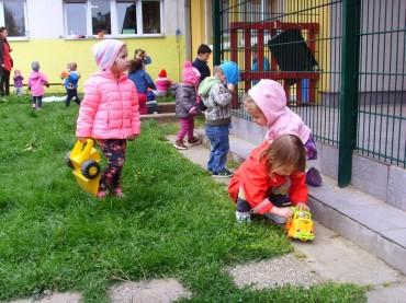 FOTO: Zečići u igri na dvorištu…